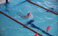 1.04.2017, II Ogólnopolskie Mistrzostwa Oławy w pływaniu - podsumowanie